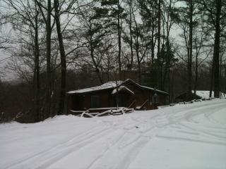 COZY Mountain Cottage near Carters Lake, Chatsworth