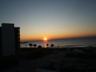 Pet-Friendly Oceanview Condo with a Pool, Myrtle Beach