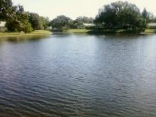 Lake View Villa~Nicely Furnished~Tranquil Spot!!!, Venice