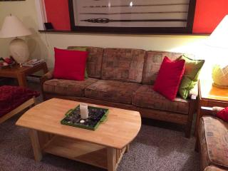Comfortable 3 Bedroom Tannersville Apartment