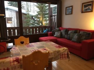 Ski in/Ski out Apartment located on the piste, Argentiere