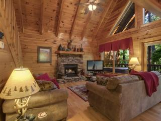 A License to Chill ~ Sherwood Forest Resort, Pigeon Forge