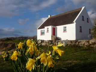 Seal Cottage, Dungloe