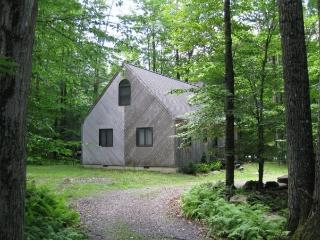 INCREDIBLE WATERVIEW POCONOS VACATION RENTAL, Pocono Lake