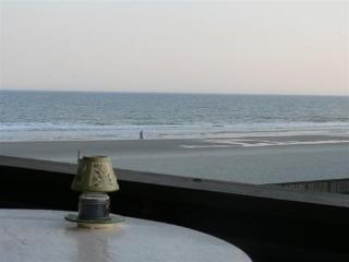 Beautiful OceanFront View 2 Bedroom Unit, Next Door to Ocean Annie, Myrtle Beach
