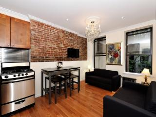Modern 2 Bedroom in NYC Low Monthly Winter Rate, New York City