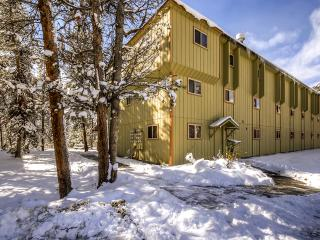 Exceptional 1BR Winter Park Condo w/Wifi & Fireplace - Just 2 Miles from the Ski Base of Winter Park!