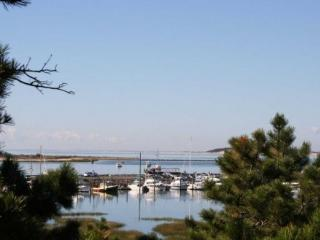 Wellfleet Waterfront with Wellfleet Harbor Views