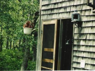 Acorn in the Woods - Peaceful 4 bedroom on an acre, Vineyard Haven