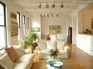 HUGE BEAUTIFUL 3000 SQ FT LOFT SPECIAL RATES, New York City