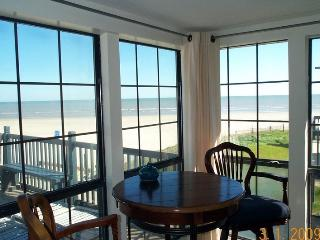 Andrea's Retreat-Cozy, comfortable fully furnished, Galveston