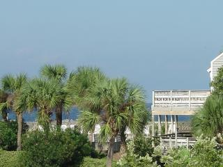 Best deal on the cape, pet freindly/pets stay free, Port Saint Joe