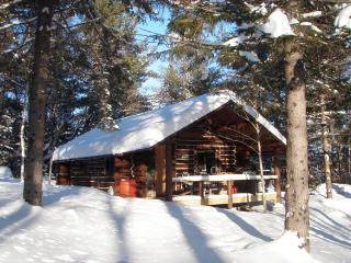 Secluded Rustic Log Cabin-HUGE mountain views!, Andover