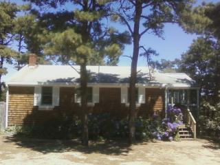 quiet, clean, convenient house, walk to beach and, Wellfleet
