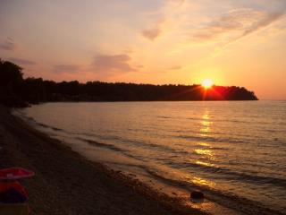 Lakefront Beauty on Private Cove-2 Cottages, Finger Lakes