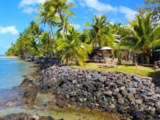 Oceanfront Treasure - w/ kayaks, BBQ, near shops, Lahaina