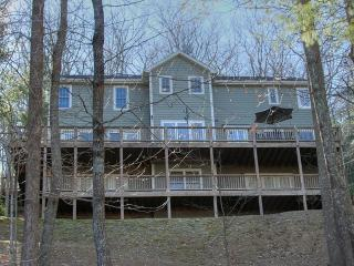 Affordable Mountain Luxury Home close to Biltmore, Asheville