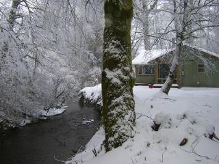 Todds Creekside Cabin, Olympic National Park, Forks