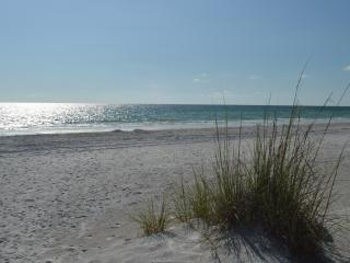 Direct Beachfront Townhouse Indian Shores Florida