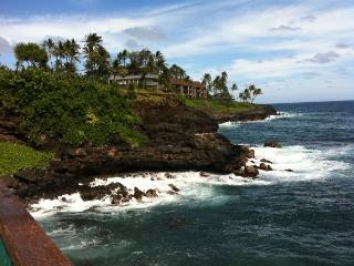 Ac Condo, Nothing But Ocean and Turtles, Poipu