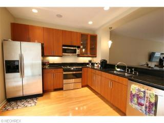 Executive Suite- 10 min to Cleveland Clinic, Cleveland Heights