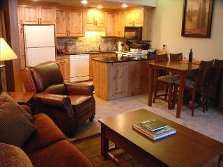 25% Off Newly Remodeled Ski in Ski out Condo, Steamboat Springs