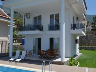 Fethiye Rental 4+1 With a Privat Pool Villa 1541
