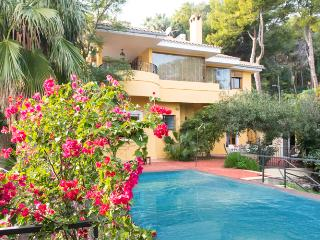 Villa with private pool and spectacular sea views, Cas Catala