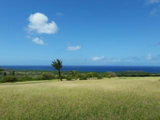 Beautiful custom home 5 acres stunning ocean views, Maunaloa