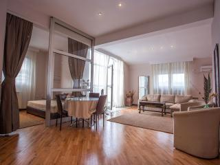 Luxury Belgrade Apartments - 5th Floor Penthouse