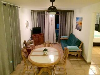 2 BR Apartment for 6 in Isabela- Beach, Surf, Fun!