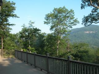 Think About Swimming, Fishing, and Hiking, Lake Lure