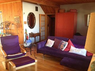Large, and charming, furnished appartment/house, Montreal