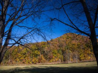 27 Secluded Acres of Serene Mountain Views, Elkins