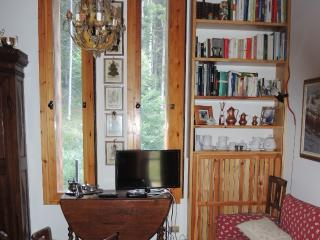 WOODEN FLAT WITH WIFI AND PARKING PERMIT, Madonna Di Campiglio