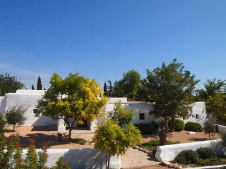 renovated finch with views in San Rafel, Ibiza