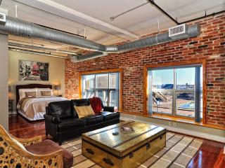 Furnished 1BR/1.5BA Luxury Condo, Norfolk