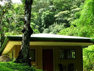 JUNGLE -BEACH 2BD BUNGALOW - Playa Escondida Lodge, Dominical