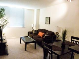 REMARKABLY FURNISHED 1 BEDROOM APARTMENT IN WASHINGTON, Washington DC