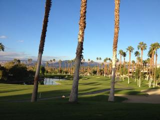 Special Place with a View, Palm Desert