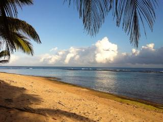 The Upper Palm ~ 100 Paces to the beach ~ peaceful, Isabela