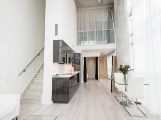 LUX 2 storey loft in downtown Toronto with Parking