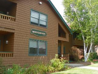 Deer Park Vacation Condo close to Recreation Center with indoor pool, Woodstock