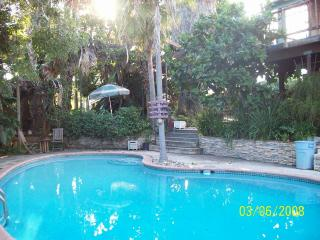 Huge Private Studio W/ Pool And Tropical Gardens, Vista