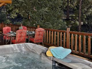 The perfect getaway. Log cabin with amazing views and spa, Idyllwild