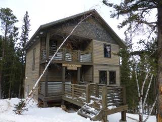 Newly built 4 bedroom cabin with private hot tub, Deadwood