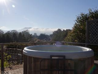 Three bedroom deluxe home on 2 acres with Hot Tub & Views, Point Reyes Station