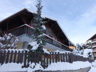 Chalet christy, Nendaz