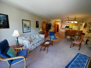 Ski Run Condominiums 203 - Walk to slopes, ski area views, spacious accommodations, pool!, Keystone