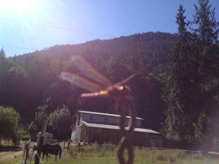 Ghost Herd Ranch at Olympic National Park, Port Angeles